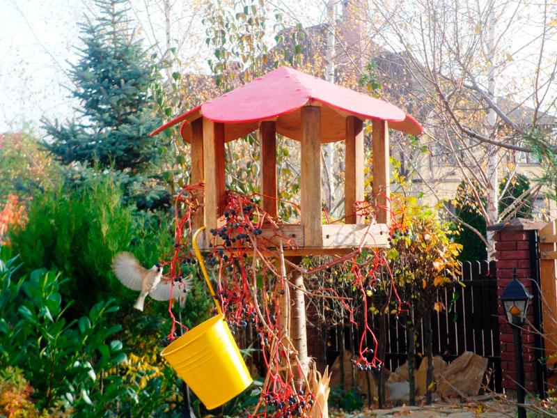 облаштування-природного-саду-своїми-11