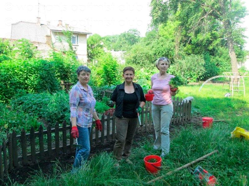 справжня-садова-фея-та-міні-соняшники